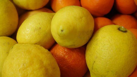 Atelier citrons confits